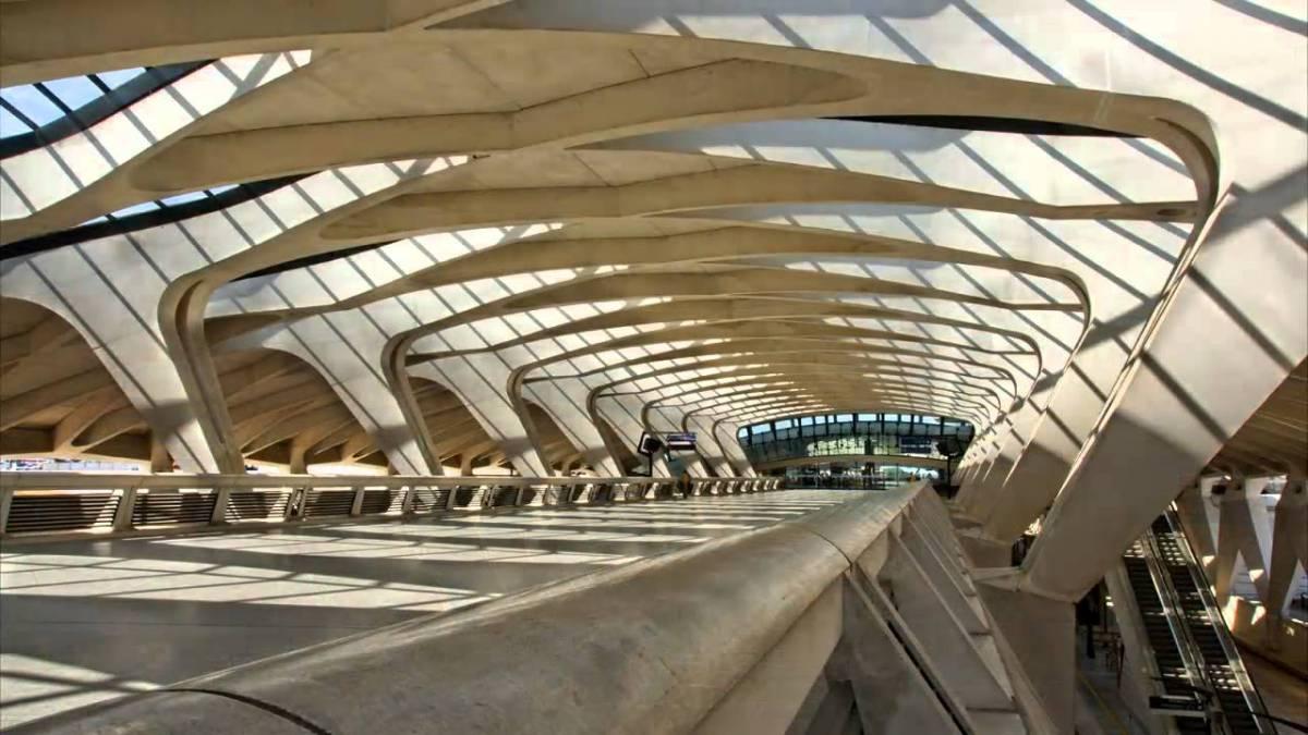 Inspiration de la nature : Gare Saint-Exupéry